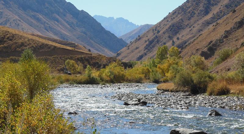 International Biodiversity Consultants - Ecology and Biodiversity